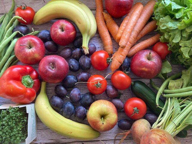 Moby Kids Gesund abnehmen ohne Diät Obst und Gemüse 5 am Tag